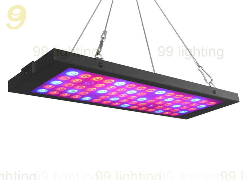 2019 New Patent Square 300W 300w 40w LED Plant Grow Light for Flower/Vegetable